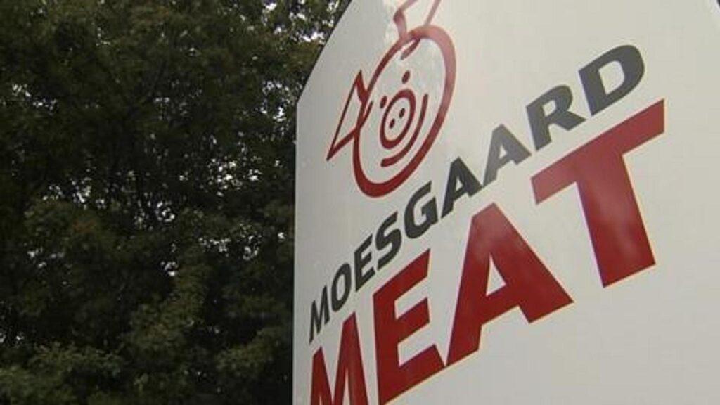 060712_Moesgaard_Meat
